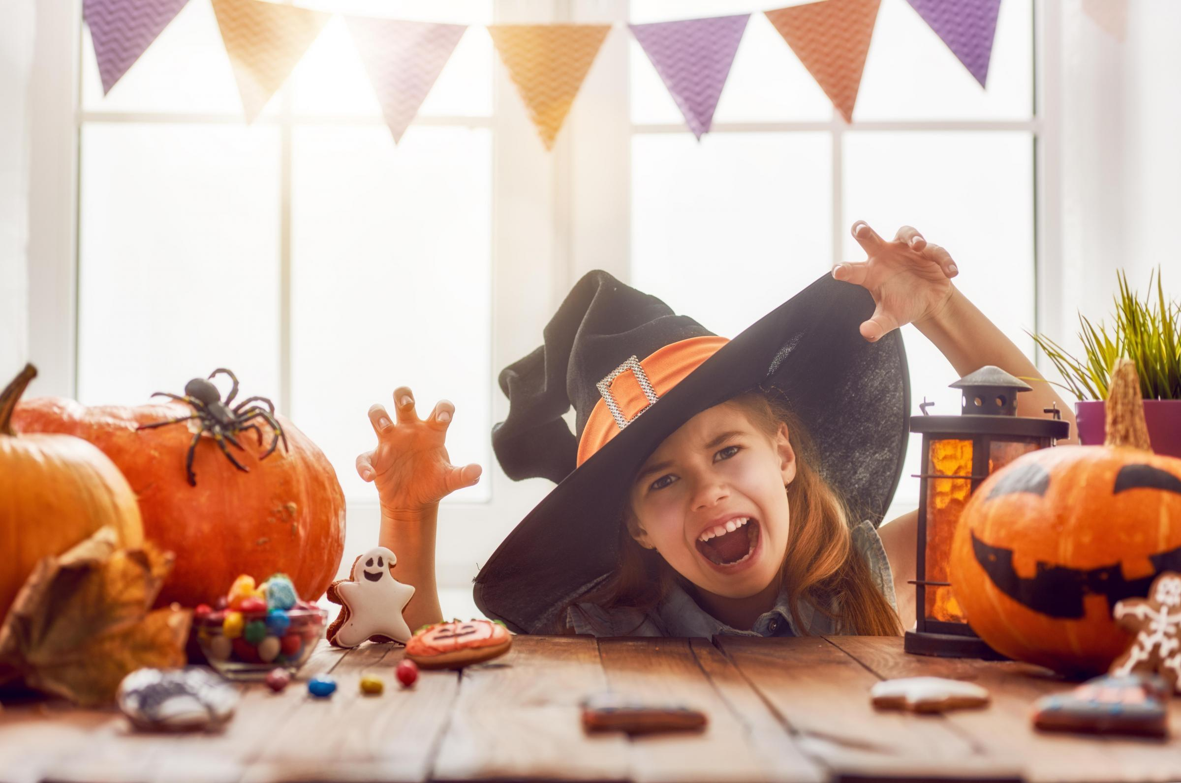 Frightful fun for families at Notcutts this Halloween