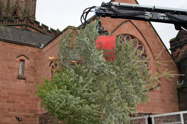 Christmas trees are removed from Chester Cathedral to be turned into chippings