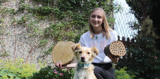 Megan Bird is taking action for bees by creating bee hotels.