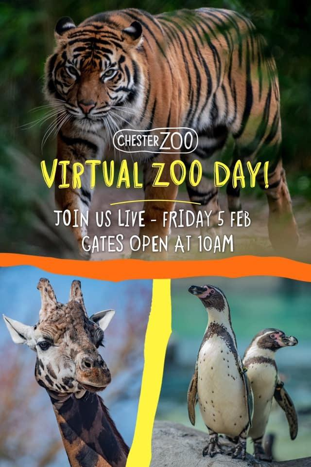 Chester Zoo S Free Virtual Zoo Brings Animals Into Your Home Northwich Guardian