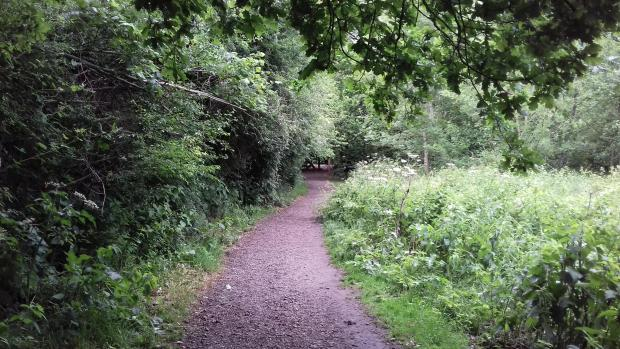 Northwich Guardian: Scrub and tree vegetation along the main route
