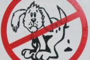 Dog fouling on the up in Davenham