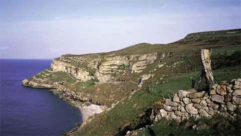 There will be bus trips around the Great Orme.