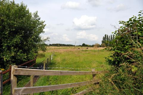More than 1,000 homes could be build on land in Wincham over the next two decades.