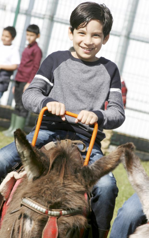 Northwich Guardian: Donkey rides are among the attractions at the fun day.