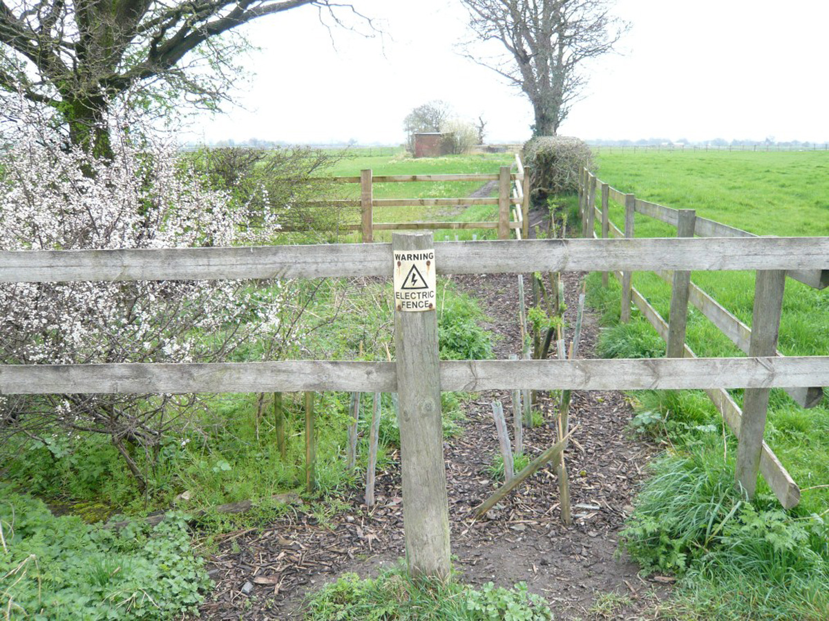 Fences damaged by irresponsible owners
