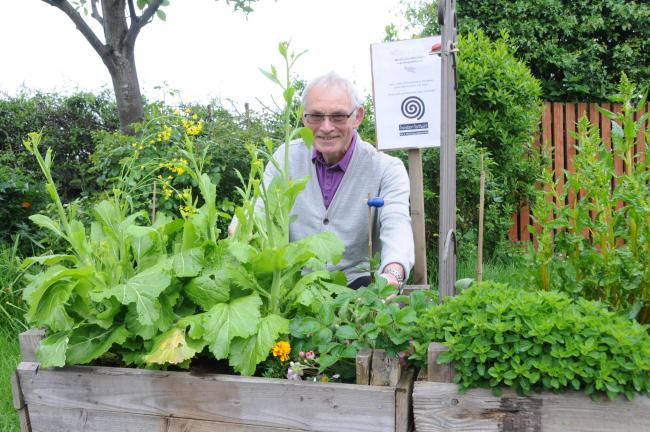 Volunteer group asks Northwich residents to grow and share food with community